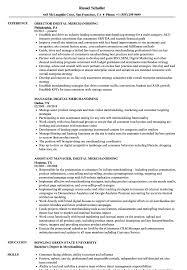 Merchandiser Job Description For Resume Best Of Digital Merchandising Resume Samples Velvet Jobs