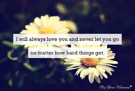 I Will Always Love You Quotes For Him Magnificent I Will Always Love You And Never Let You Go Quotes With Pictures
