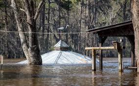 photo essay flooding in uncertain texas flooding in uncertain texas on caddo lake in 2016