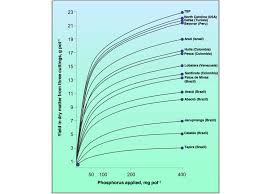 Why Low Reactive Rock Phosphate Cost You More Union Harvest