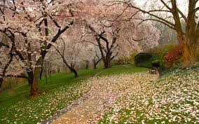 Small Picture Americas Most Beautiful Gardens Travel Leisure