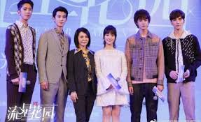 a new meteor garden tv series is in the making