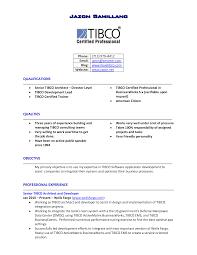 Sales Professional Resume Resume Work Template