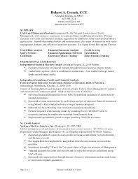 Management Analyst Job Description Amazing Market Risk Analyst Resume Professional Resume Templates