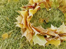 Lehtikruunu Kransseja Wreaths Wreathsplants Ja Garden