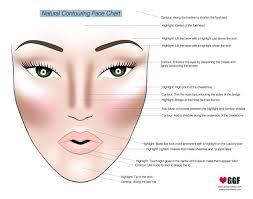 makeup contouring chart