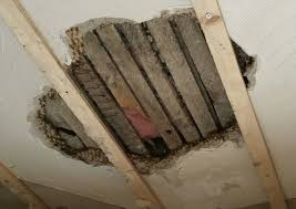 remove plaster walls