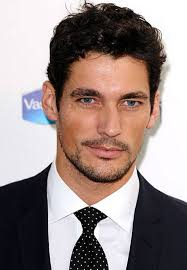 Doing their bit: David Gandy is doing his bit for charity - London Evening Standard - David%2BGandy