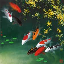 fine art paintings giclee art prints on canvas koi fish wall art koi