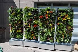 Hydroponic Kitchen Garden Movable Plants On Walls Vertical Gardens Mobile Moveable