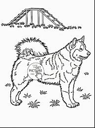 Free Animal Coloring Pages Elegant Coloring Dog Free Coloringpages