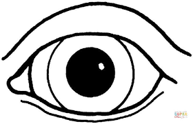 Small Picture preschool coloring pages eyes coloring page human body human body