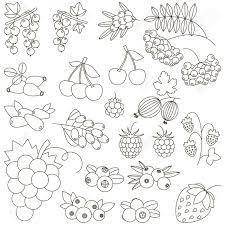 Vettoriale Berry è Pronto Per Essere Colorato Libro Da Colorare