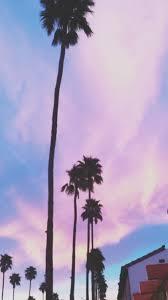 palm trees tumblr vertical. 6 Palm Trees Tumblr Vertical