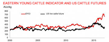 Summer Forecast Adds Pressure To Cattle Price Outlook Beef