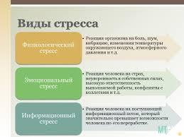 Производственный стресс Презентация • Блог Михаила Титова Школа  Виды стресса