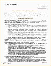 Administrative Assistant Resume Summary Examples Resume