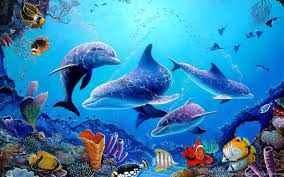 Dolphin Wallpapers 3d Wallpapers ...