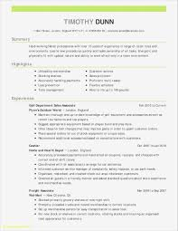 Hairstyles Professional Resume Examples Stunning Resume Format