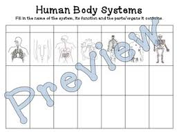 Human Body Systems Chart Function Parts By Sandys Science Tpt