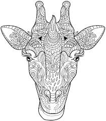 Small Picture 178 best Adult Coloring Pages images on Pinterest Coloring pages