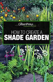 how to create a shade garden basics