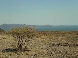 「ケニア遊牧民」の画像検索結果