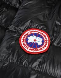... Canada Goose Women s HyBridge Lite Jacket - Black Silverbirch ...