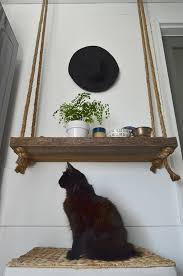 a black cat poses in front of a rope and wood hanging shelf diy hanging rope shelf