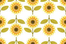 Sunflower Pattern Impressive Yellow Sunflower Seamless Pattern Stock Vector Illustration Of
