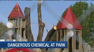 bellevue park gets makeover after nic found in wood