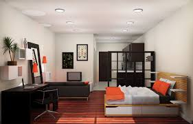 Decorating Your Interior Home Design With Best Cool One Bedroom Apartment  Layout Ideas And Make It
