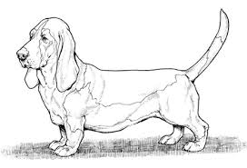 Small Picture Dog Coloring Pages by YUCKLES