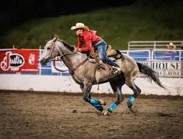 Contestants - Steamboat Pro Rodeo