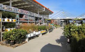 home depot garden club great home depot s