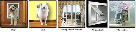 installing doggie door how to install a door install pet door in glass perth