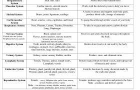 Human Body Systems Chart 24 Problem Solving Body System Functions Chart