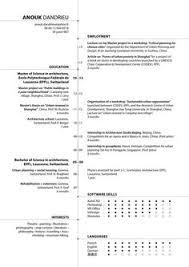 information architect resume resume