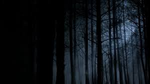Image result for Darkness