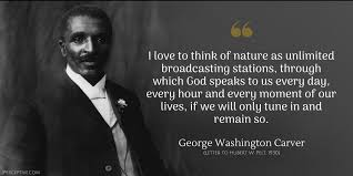George Washington Famous Quotes Stunning George Washington Carver Quotes Best George Washington Famous Quotes