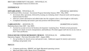 Resume Copy Paste Template Ideas Copy Of A Resume Format Type Of