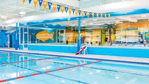 Image result for goldfish swim school