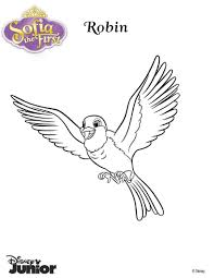 Small Picture Robin the pigeon coloring pages Hellokidscom