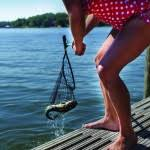 How Many Fish In Charlie Lake Northeast News