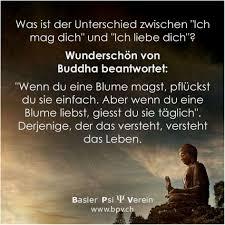 Schöne Buddha Zitate Karma Besten Bilder Zum Zitate Und Sprüche