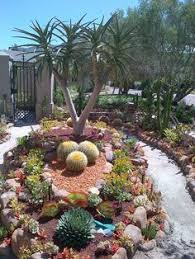 Small Picture Cactus gardens Garden and backyard Pinterest Cacti Gardens