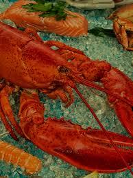 Steamed Lobster Recipes