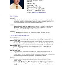 American Resume Format Resume Template Easy Http Www