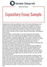 what is expository essay examples samples  what is expository essay examples 3 12 samples