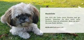 Gedichte Von Nicole Sunitsch Autorin Sprüche Hundeliebe Aus
